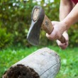 Chopping firewood — Stock Photo