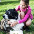 Girl playing with her dog — Stok Fotoğraf #34934687