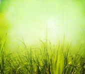 Abstrakt natur bakgrund — Stockfoto