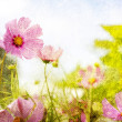 Photo: Flowers on grunge background