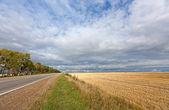 Paesaggio autunnale — Foto Stock
