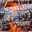 Closeup of a warm fire burning in a fireplace — Stock Photo