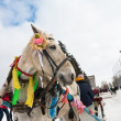 Horse at winter holiday in Samara, Russia — Stock Photo #14282205