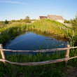 Small pond in the village on the sunset — Stock Photo #15336381