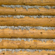 Wall of the wooden village house made of logs — Stock Photo