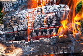 Closeup of a warm fire burning in a campfire — Stockfoto