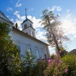 Christian orthodox church in Novgorod region, Russia - Stock Photo