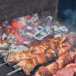 Juicy slices of meat with sauce prepare on fire (shish kebab) — Stock Photo