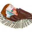 Banknotes in brown leather holster — Stock Photo #22939408