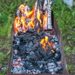 Stock Photo: Coals for cooking shish kebab (shashlik)