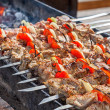 Shish kebab: slices of meat with sauce preparing on fire — Stock Photo #25212301