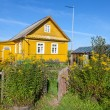 Rural scene with yellow flowers and wooden house — Stock Photo