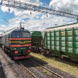 Freight train in Russia — Stock Photo #26632157