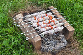 Shish kebab on the improvised oven made of brick — Stock Photo