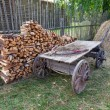 Old horse drawn wooden cart at the russian village in summer day — Stock Photo