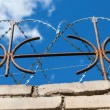 Barbed wire on the fence against a bright blue sky — Stock Photo