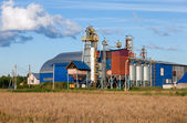 Fabriken bearbetning av spannmål och spannmål — Stockfoto