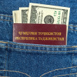 Tajikistan passport and dollar bills in the back jeans pocket — Stock Photo