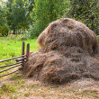 Haystack on sunny day in countryside — Stock Photo