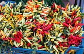 Hot chili pepper on market close up — Stock Photo