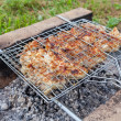 Barbecue with delicious grilled meat on the grill — Foto Stock