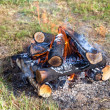 Closeup of warm fire burning in a campfire — Stock Photo #44039277
