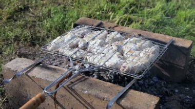 Barbecue with delicious grilled meat on the grill — Stockvideo