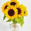 Sunflowers in a glass vase - Stock Photo
