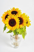 Sunflowers in a glass vase — Stock Photo
