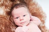 Nyfött barn på päls — Stockfoto