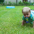 Baby boy crawling — Stock Photo
