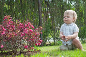 Little baby boy near pink bush — Stock Photo