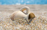 Ancient amphora on the beach — Stock Photo