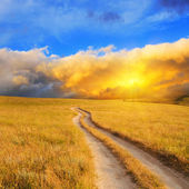 Sunrise over the meadow — Stock Photo
