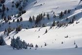 Winter landschap — Stockfoto
