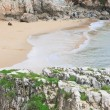 Beach in Cascais. Portugal — Stock Photo