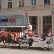 Horse-drawn carriage with tourists on the streets of Vienna. Aus — Stock Photo