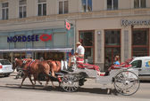 Horse-drawn carriage with tourists on the streets of Vienna. Aus — 图库照片