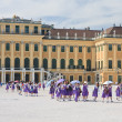 Schonbrunn Palace. Vienna, Austria — Stock Photo #40802459