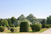 Palm Pavilion and floral lawn in the park of Schonbrunn, Vienna, — Stock Photo