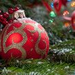 Christmas toy on fir branches — Stock Photo #14909889