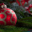 Christmas toy on fir branches — Stock Photo
