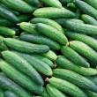 Fresh cucumbers in the market. - Stock Photo