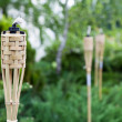 Decoration tiki oil torches. — Stock Photo #34773805