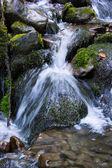 Mountain stream. — Stock Photo