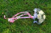 Wedding bouquet from roses in a grass — Foto de Stock