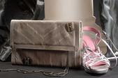 鞋子和手袋 — Stockfoto