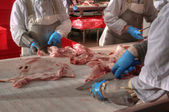 Pork processing meat food industry — Stock Photo