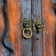 Old metal ancient door detail, knocker - 图库照片