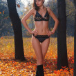 A young beautiful woman in the autumn forest — Stockfoto